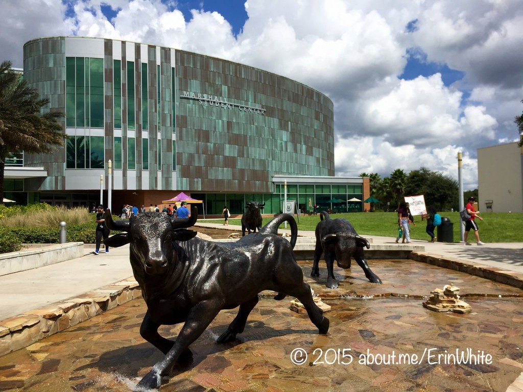 2015-09 USF bull sculptures WORDPRESS